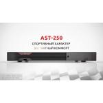 Профессиональная караоке система  AST-250