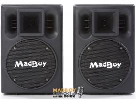 Madboy BONEHEAD 208 активные колонки